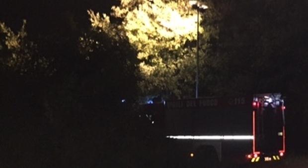 Cadavere di una donna in una scarpata a Tolentino: è quello della pittrice scomparsa?